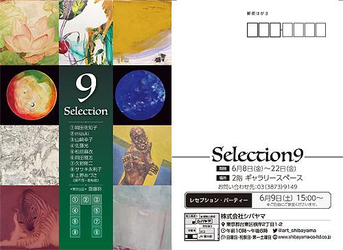 Selection9_dm